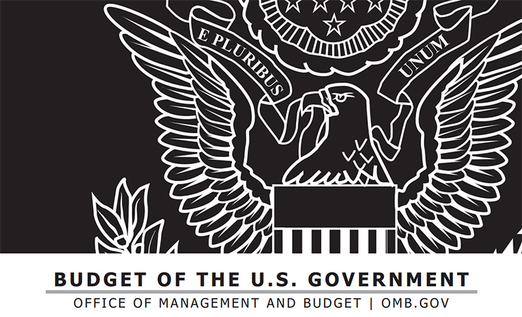 A portion of the cover design for the White House Office of Management and Budget's main budget document.