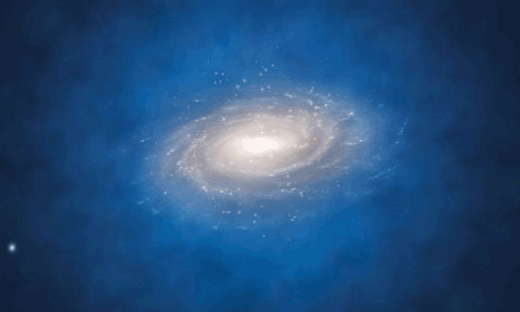 Is There Something Special About Our Galaxy's Dark Matter?