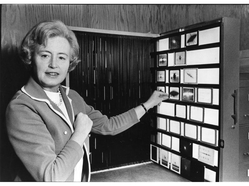 Portrait of E. Margaret Burbidge viewing astronomical slides at the American Astronomical Society (AAS) meeting, 1980.