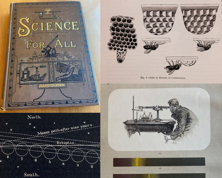 Illustrations from Science for All. Formation of beehives (upper right), eclipse of the moon (lower left), and spectrosope (lower right).