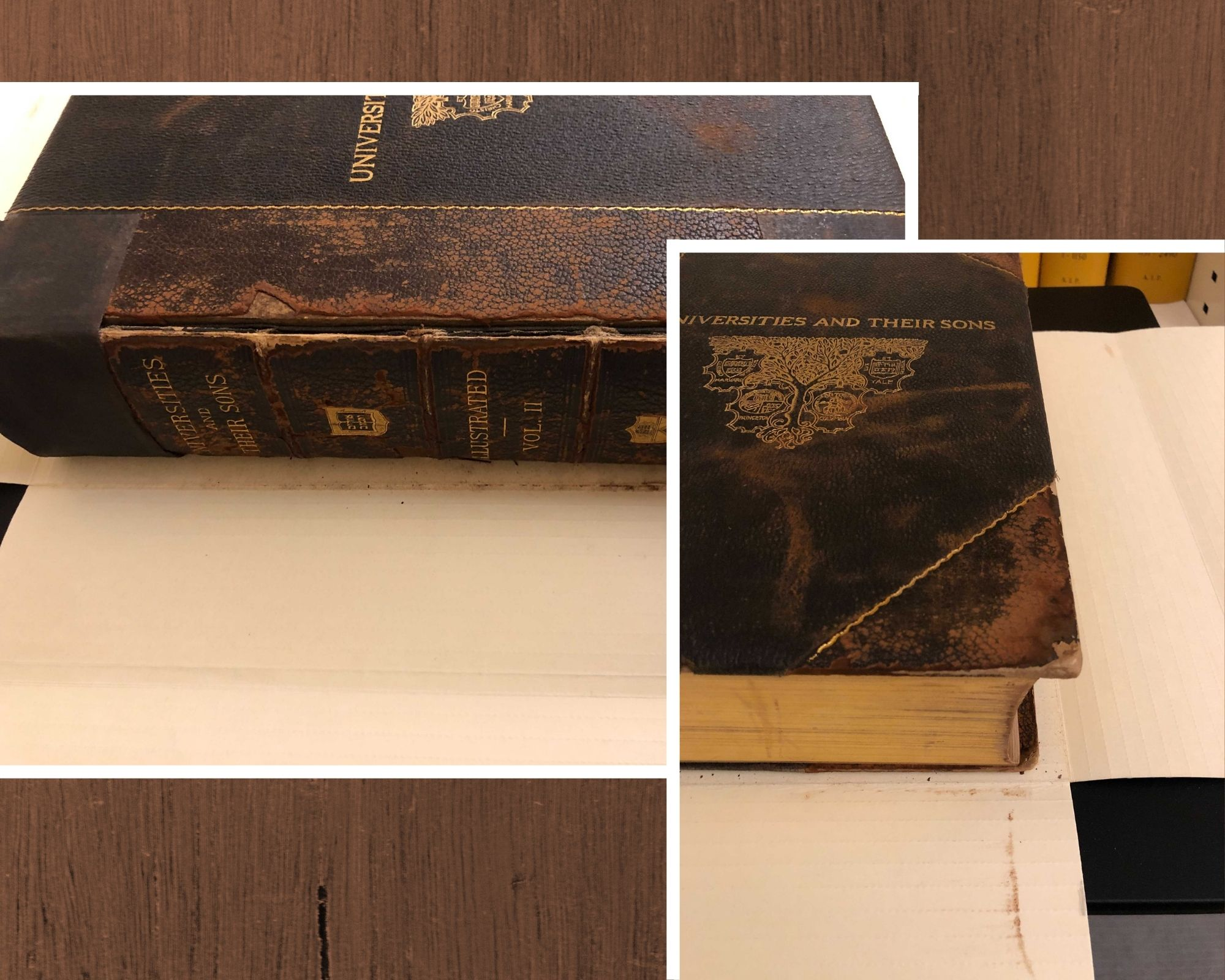 Image shows heavy red rot on the cover and spine of the book Universities and Their Sons, Vol. II (1899).