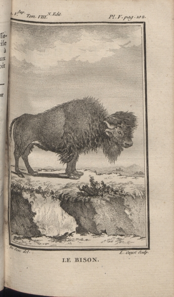 "Vol. V, plate facing pg. 102: Bison. Buffon was known for his view that New World animals were ""degenerate"" and smaller than those in Europe. Thomas Jefferson objected to that view."