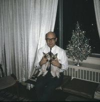 Telegdi Valentine B23 - Val Telegdi celebrates Christmas in Chicago with two Siamese cats and a tiny decorated tree.